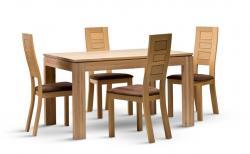 Jídelní židle MOD 490 ze stolem DM 016
